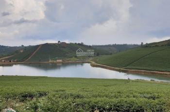 Chính chủ cần bán đất nền ngay khu du lịch thác Đamri, đường nhựa rộng rãi 10m