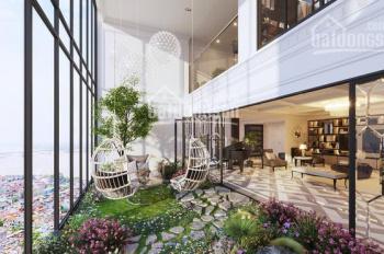 Suất nội bộ Penthouse có sân vườn chung cư The Golden Star Quận 7, đối diện Big C quận 7, giá nội