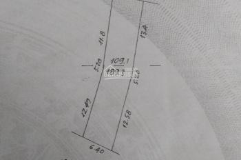 Bán đất làm nhà ở, kinh doanh diện tích 190m2 có đất ở 100m2 đất ở mặt đường Phú Cát, Quốc Oai