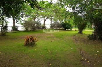 Bán đất khu villa trục Nguyễn Văn Hưởng. DT: 15,68x20.55m, giá chỉ: 120tr/m2, LH: 0902 293 310