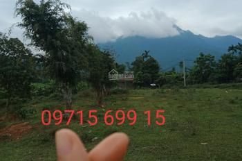 Chính chủ cần bán 4500m2 đất nghỉ dưỡng thế đất cao view đồng lúa Yên Bài: Giá hơn 300tr/sào