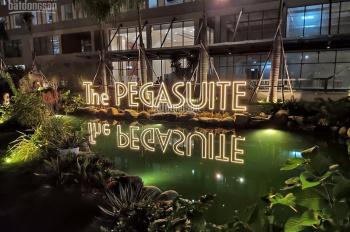 chính chủ kẹt tiền bán căn hộ pegasuite (21-27) (11-34).cam kết giá tốt nhất thị trường 0703420021
