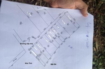 Cần Bán mảnh đất Nông Nghiệp mặt đê Hữu Hồng, Đối Diện cảng Hồng Vân. 350tr