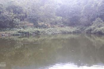Cần bán gấp 18.5 sào đất tại Tiến Xuân, trong đất có ao view đẹp với giá 250tr/sào