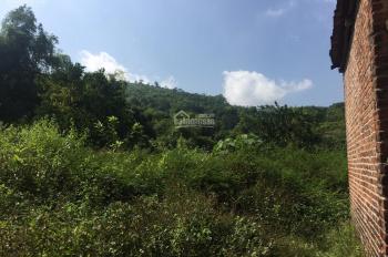 Chính chủ cần chuyển nhượng  lô đất thổ cư tại thôn Đồng Bèn Xã Đông Xuân -Quốc Oai-HÀ Nội