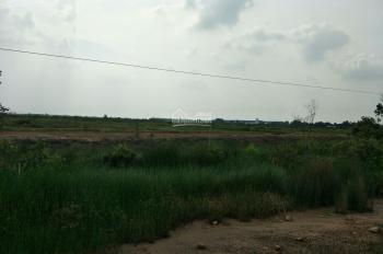 cần bán đất dự án đất Long An pháp lý hoàn chỉnh