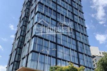 Tòa nhà văn phòng MT Hoàng Văn Thụ, P. 4, Tân Bình, 12x20m, 2 hầm 10 lầu, DTSD 2196m2, 50 tỷ
