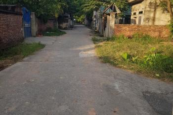 Cần bán đất thổ cư thôn Lạc Xá, Quế Tân, 140m2, giá 4xx tr. Lh 0988889956