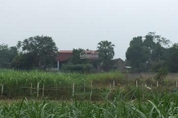 Bán đất gấp khuôn viên hoàn thiện DT: 3200m2 thực tế sử dụng 3600m2 tại xã Yên Bài, Ba Vì, HN