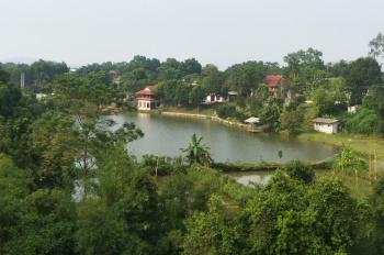 Thanh lý khuôn viên sinh thái hồ Đồng Chanh, xã Nhuận Trạch, huyện Lương Sơn, tỉnh Hòa Bình
