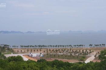 Chính chủ cần bán ô đất biệt thự đồi Tuần Châu
