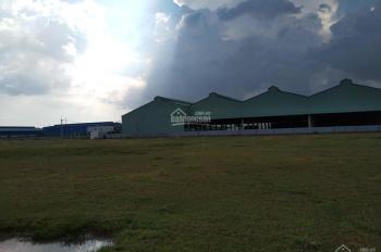 Chính chủ cần bán gấp đất khu cụm công nghiệp Bàu Sen, Nhơn Trạch, 0901197009