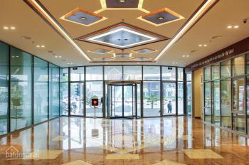 Cho thuê văn phòng hạng A tại tòa nhà Eurowindow Trần Duy Hưng diện tích 255m2, liên hệ 0982834760