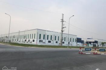 Cần bán nhà xưởng đang cho thuê tại Thuận Thành, Bắc Ninh,1.3 ha,dòng tiền tốt.Lh 0338600587