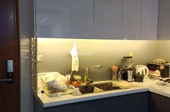 Cho thuê căn hộ nội thất đầy đủ, 2PN-3PN giá 7.3tr/th tại chung cư Đức Khải Era Q7 LH:0938 996 850
