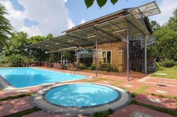 Bán gấp 5000m2 có sẵn bể bơi, nhà hai tầng đang KD homestay, có sân tennis, bám hồ tại Lương Sơn