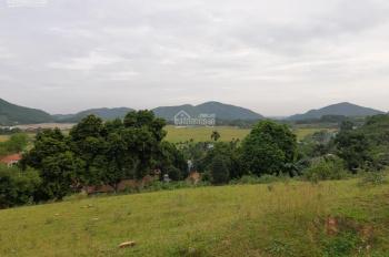 Bán 4000m2 có 800m2 thổ cư xóm Quê Vải , xã Tiến Xuân, Thạch Thất, Hà Nội, view cánh đồng thoáng