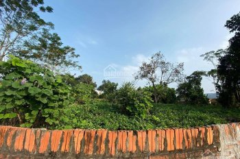 Bán đất 1130m2 Yên Bình, Thạch Thất làm nghỉ dưỡng, nhà vườn. LH 0977645890