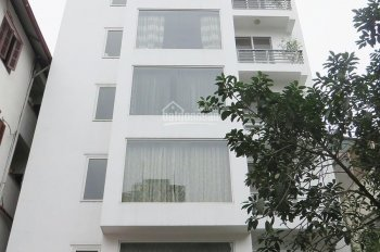 Cho thuê MT Hoàng Văn Thụ, P. 15, Quận Phú Nhuận, DT: 8x18m, 5 lầu