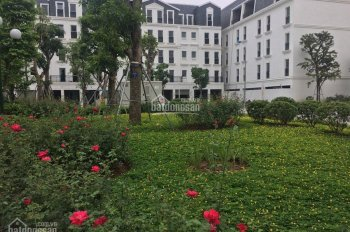 Chính chủ bán căn liền kề 120m2 B4 Nam Trung Yên view nội khu vườn hoa x 5 tầng