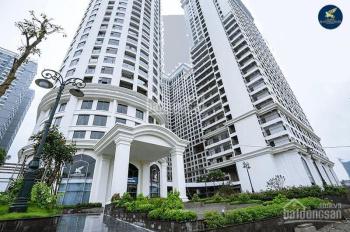 Chính chủ cần bán gấp căn hộ số 04 dự án Sunshine Garden, giá rẻ nhất thị trường, LH 0967125225