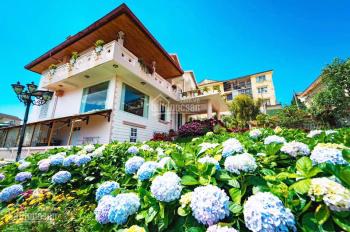 GĐ định cư cần bán gấp biệt thự villa 1500m2 view đẹp Nguyễn Trung Trực, P4, diện tích đất 1500m2