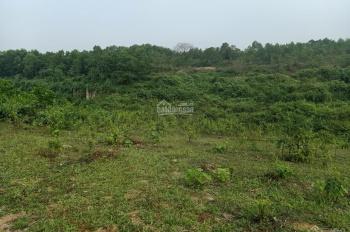 Cần chuyển nhượng lô đất 9150m2 đất làm nhà vườn khu nghỉ dưỡng giá đầu tư tại Cư Yên, LS, HB