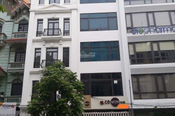 Cho thuê nhà mặt phố Lò Đúc, 110m2 x 7 tầng, mặt tiền 4,2m, thông sàn, có hầm, thang máy, PCCC