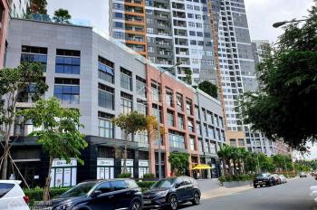 Officetel Sun Avenue Quận 2 - Văn phòng Quận 2 cho thuê giá rẻ.