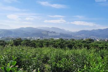 Đất thích hợp làm khu nghỉ dưỡng CN 3400m2, view đỉnh núi nhìn ra QL 20, cách trung tâm Bảo Lộc 6km