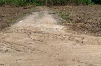 Bán đất thổ 115m2 thuộc ấp 2 xã Hựu Thạnh, Đức Hòa, Long An