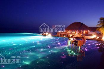 Cần bán nhanh căn hộ Palm Heights giá tốt 2PN, 3.7 tỷ, view hồ bơi thoáng mát, LH 0977680053