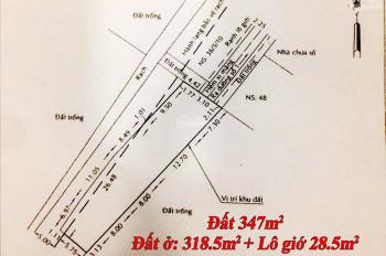 Trí BĐS, đất 347m2 (đất ở 318.5m2), hẻm 36 đường số 1, P Tân Tạo A. Hẻm bê tông 3m, đất dân cư HH