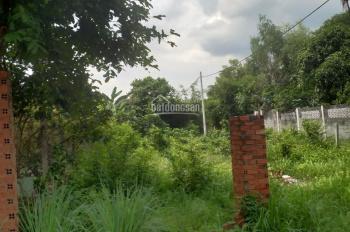 Cần bán đất 2 mặt tiền đường 438, xã Phú Hòa Đông, Củ Chi