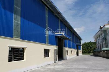 Cho thuê kho xưởng tại khu công nghiệp Vĩnh Lộc, Bình Chánh, DT 2.500m2 - 10.000m2