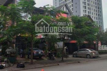 Cho thuê biệt thự Tây Nam Linh Đàm vị trí đẹp để mở cửa hàng, spa, mầm non, nhà hàng, văn phòng