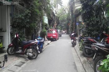 Bán nhà đất mặt ngõ kinh doanh Thái Thịnh 1, 60m2, giá 6.1 tỷ