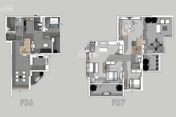 Bán căn penthouse Hoàng Anh Thanh Bình thiết kế cao cấp hơn 300m2, giá 10.5 tỷ