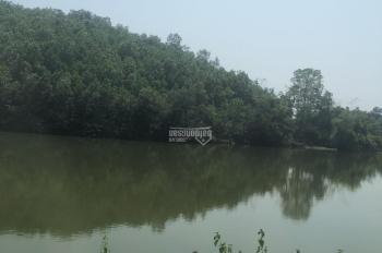 Bán gấp 1,8ha bám hồ tại Kim Bôi, Hòa Bình, phù hợp làm khu du lịch sinh thái hoặc homestay giá rẻ