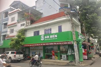 Bán nhà góc ngã tư sầm uất, Trương Vĩnh Ký, Nguyễn Hậu, DT: 4.25x18m NH 7m, 1 lầu ST đang cho thuê