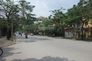 Cho thuê biệt thự đường Trần Thủ Độ KĐT Pháp Vân, lô góc DT 320m2, 4 tầng, SĐCC, cho thuê dài hạn