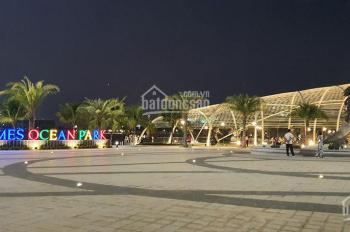 Chính chủ bán lô biệt thự đơn lập HA 1 - 7x shophouse quảng trường Vinhomes Ocean Park