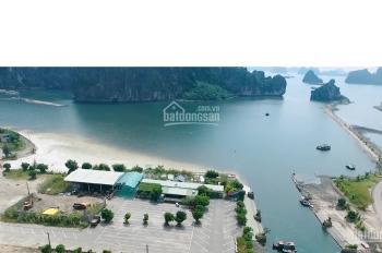 Đón sóng đầu tư đất nền Cẩm Phả theo chân các ông lớn bất động sản Sungroup, Vingroup, FLC