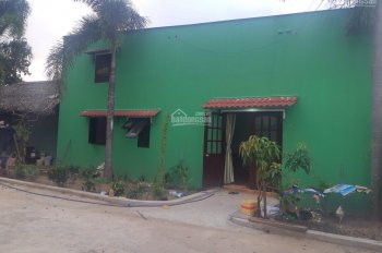 Cần bán nhà xưởng mặt tiền đường 65 - xã Tân Phú Trung - Củ Chi
