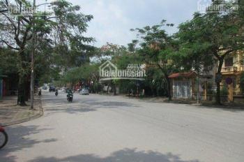 Cho thuê biệt thự mặt đường Trần Thủ Độ KĐT Pháp Vân DT 300m2 x 4T, đã hoàn thiện, 0917945864