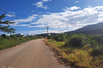 Khu nghỉ dưỡng 2ha, mặt tiền đường Đinh Công Tráng, sát bên dự án du lịch sinh thái