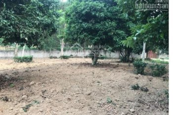 Bán đất Đồng Trúc, làm nghỉ dưỡng, nhà xưởng, 1.800m2, giá 3,2 triệu/m2