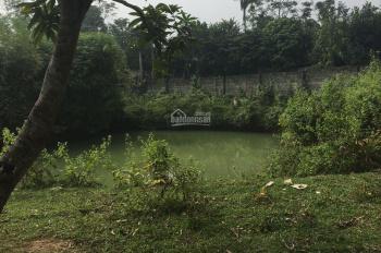 Gia đình cần bán mảnh đất sổ đỏ chính chủ tại Huyện Lương Sơn Hoà Bình
