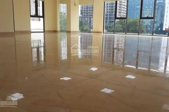 Nhà Phạm Tuấn Tài - Trần Quốc Hoàn 165m2, mặt tiền 10m, 9 tầng, 1 hầm, giá 61 tỷ. LH 0963189826