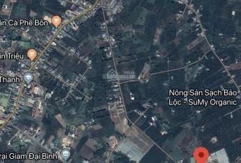 Bán đất nông nghiệp phân lô, xã Lộc Thành, Bảo Lâm, Lâm Đồng